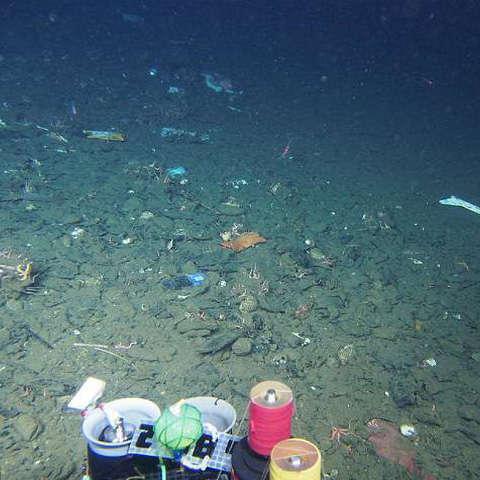 rác nhựa dưới đáy biển 1