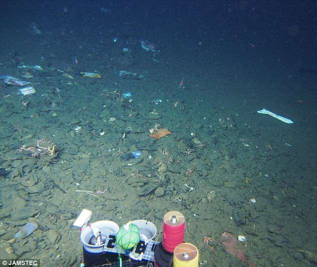 rác thải nhựa dưới đáy biển 2