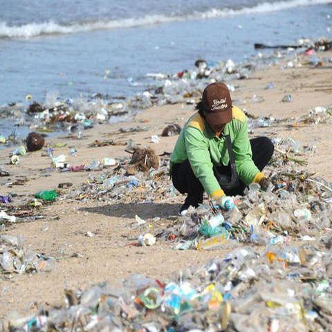 rác thải nhựa việt nam2