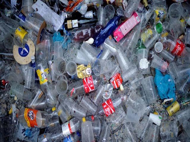 cấm nhựa sử dụng một lần vào năm 2025