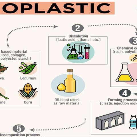 nhựa gốc thực vật 1